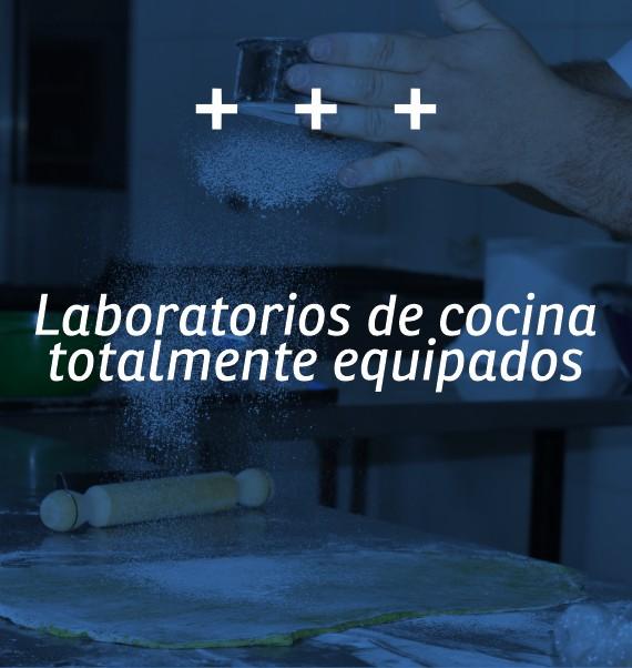 lab-tgg